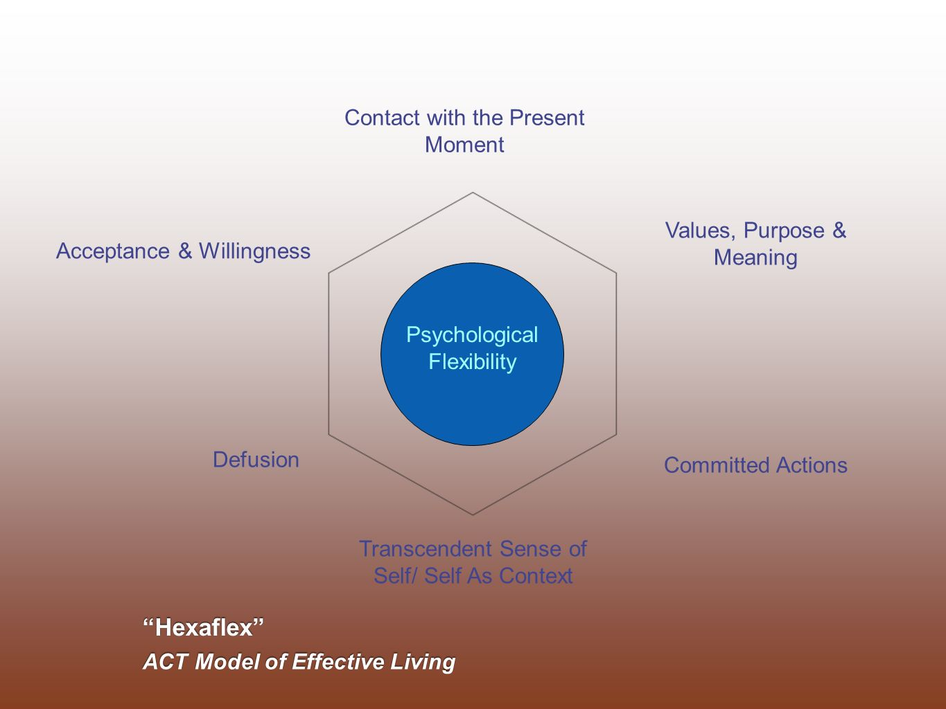 Hexaflex Contact with the Present Moment Values, Purpose & Meaning