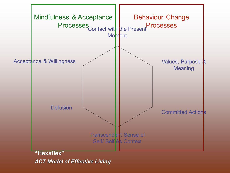 Mindfulness & Acceptance Processes Behaviour Change Processes