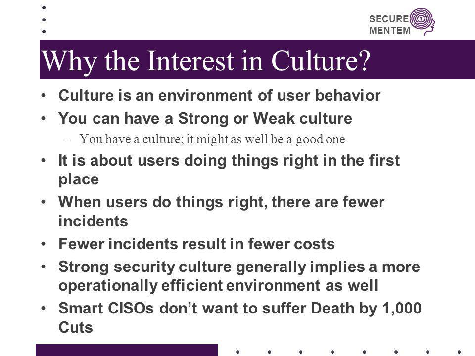 Why the Interest in Culture