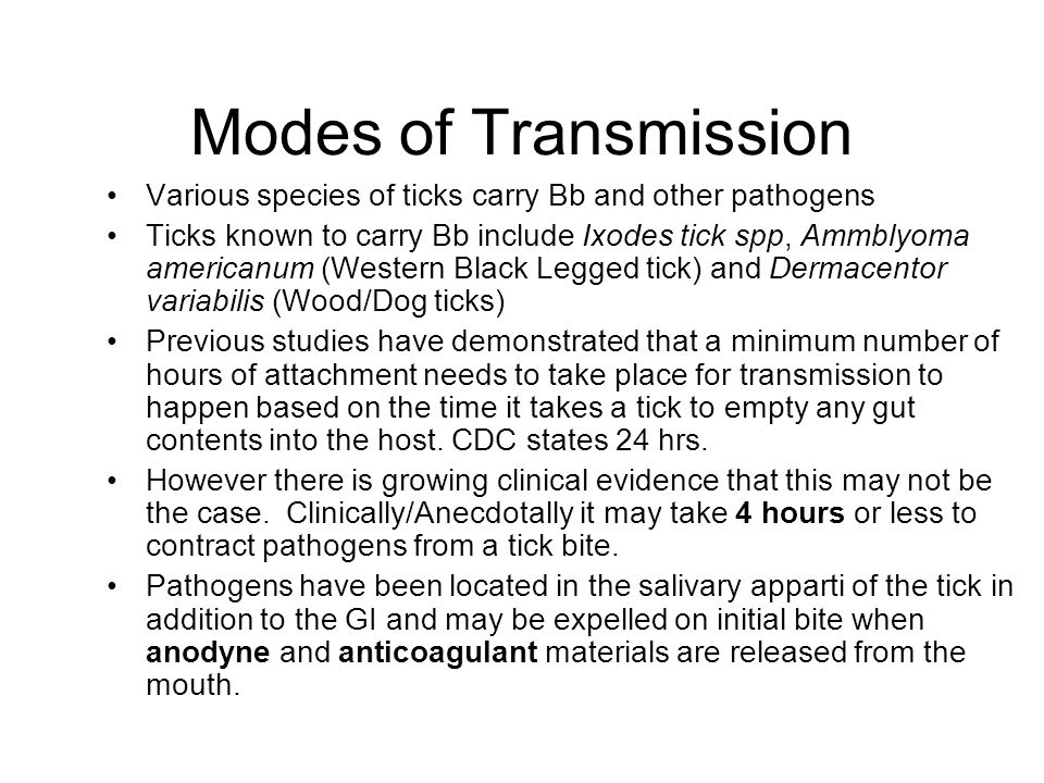 Modes of Transmission Various species of ticks carry Bb and other pathogens.