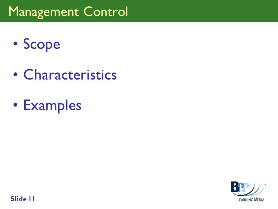 Management Control Scope Characteristics Examples