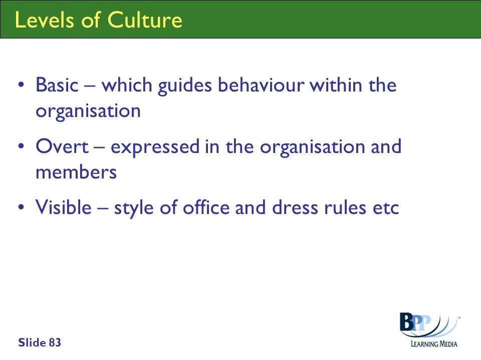 Levels of Culture Basic – which guides behaviour within the organisation. Overt – expressed in the organisation and members.