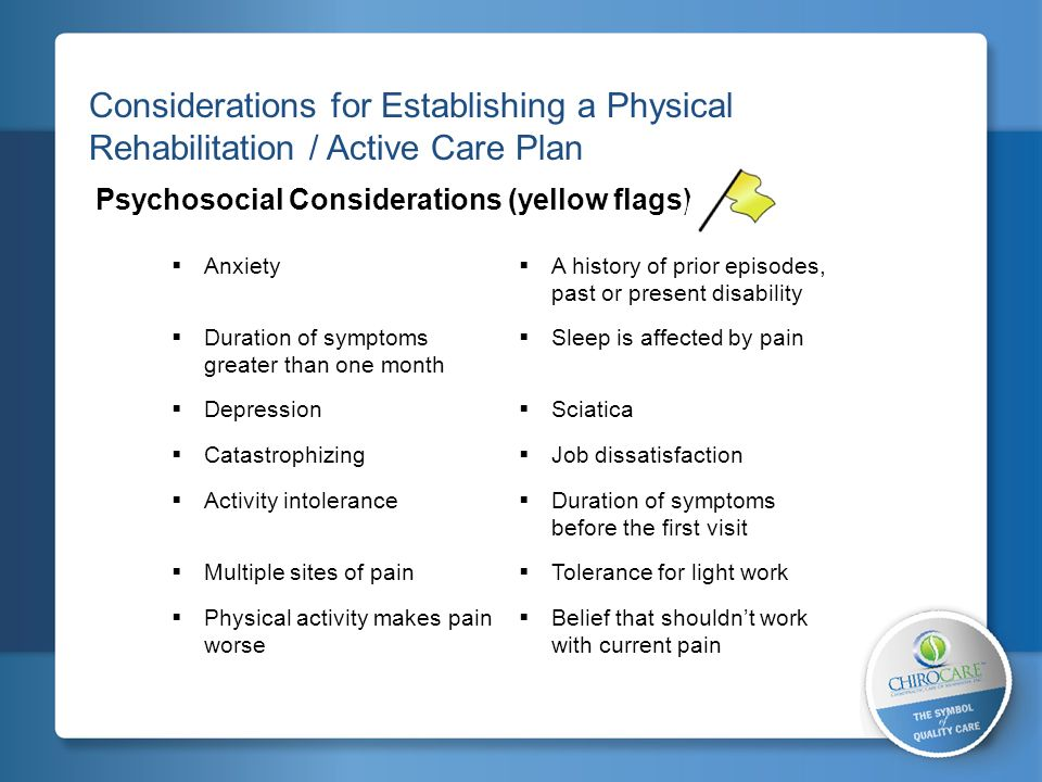 2 Considerations for Establishing a Physical Rehabilitation / Active Care Plan. Psychosocial Considerations (yellow flags)