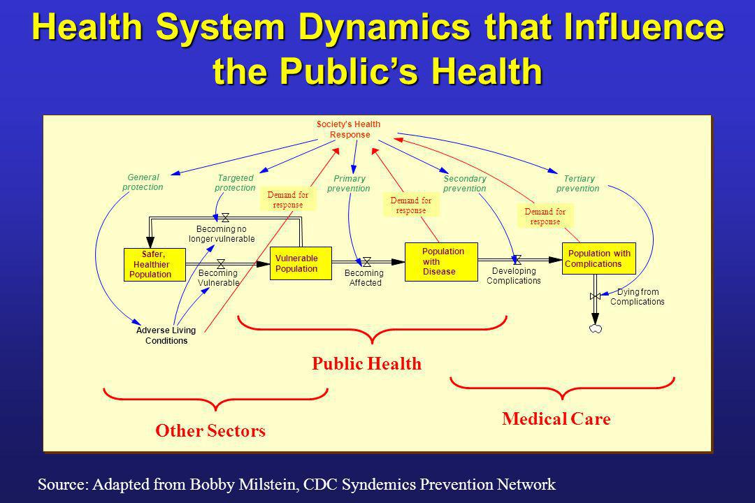 Health System Dynamics that Influence the Public's Health