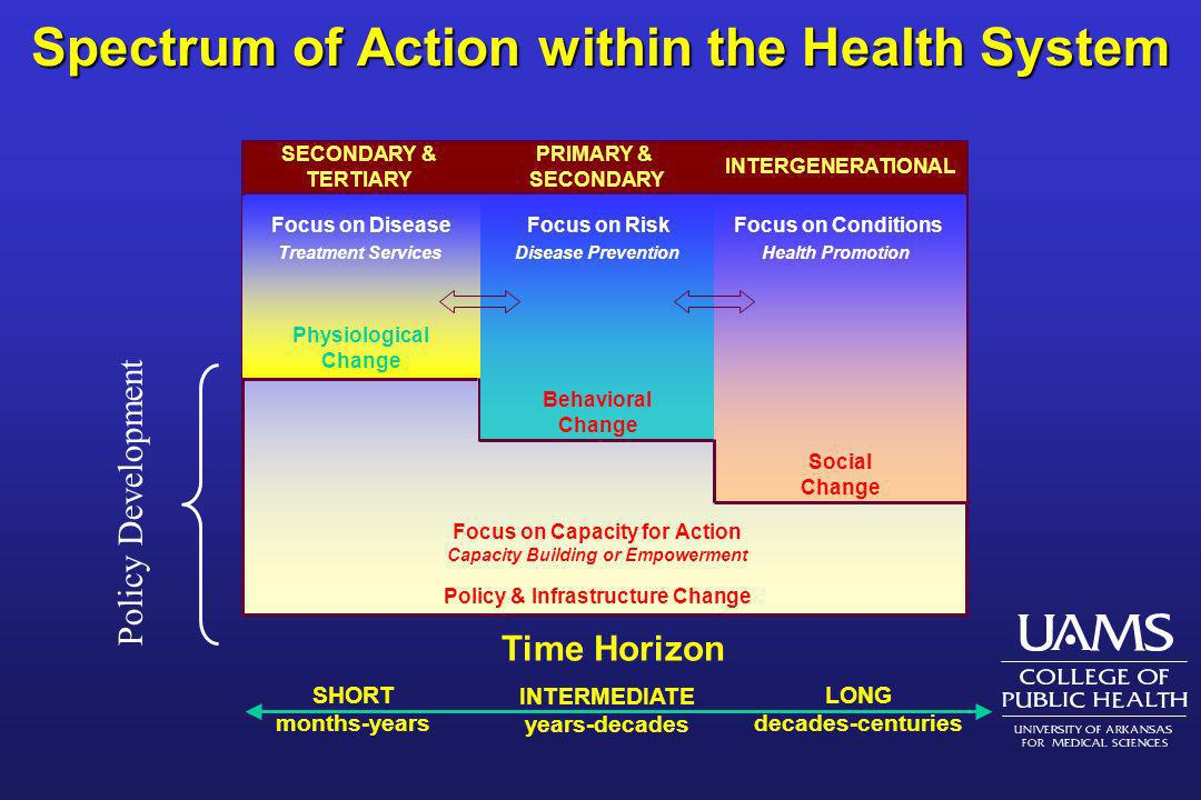Spectrum of Action within the Health System