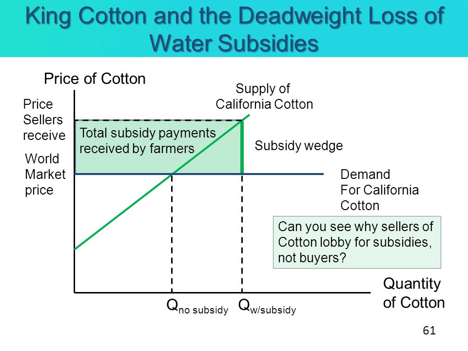 King Cotton and the Deadweight Loss of Water Subsidies