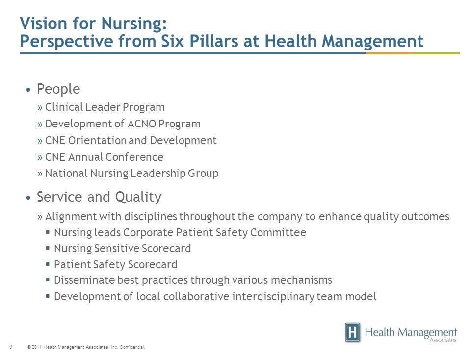 Vision for Nursing: Perspective from Six Pillars at Health Management