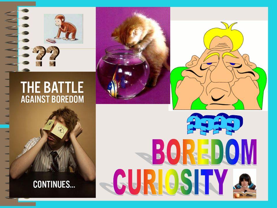 BOREDOM CURIOSITY