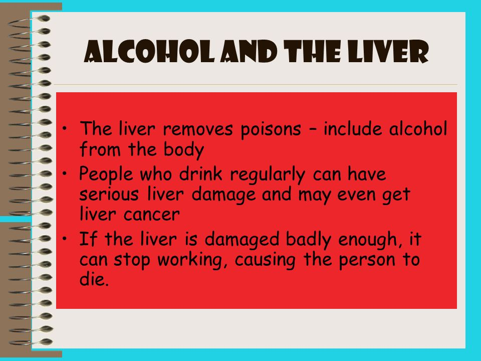 ALCOHOL and the LIVER The liver removes poisons – include alcohol from the body.