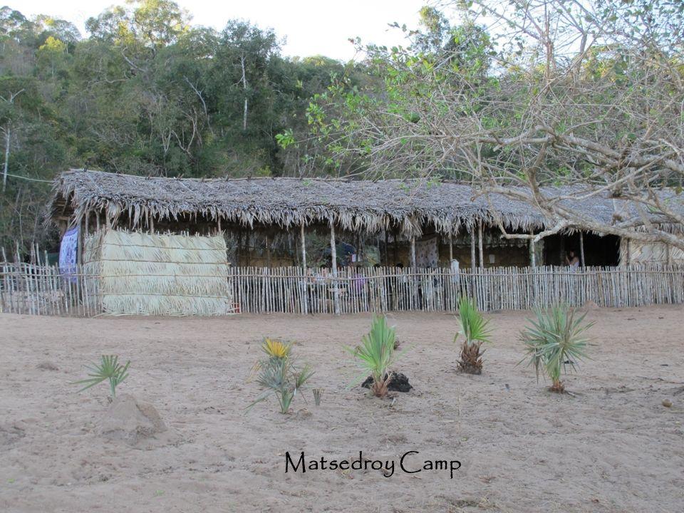 Matsedroy Camp Matsedroy Camp