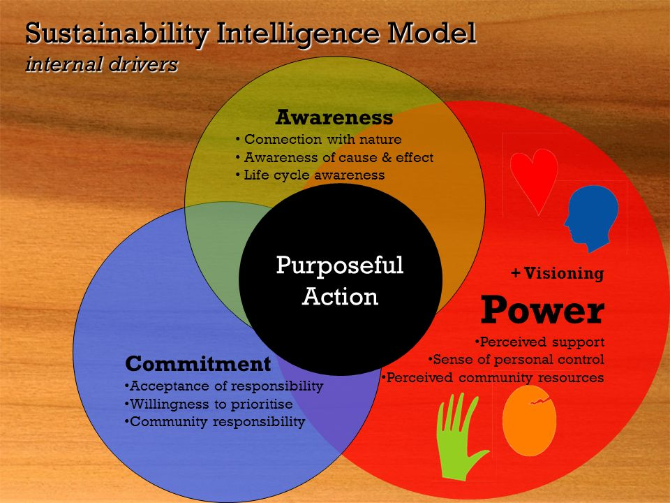 Power Sustainability Intelligence Model internal drivers