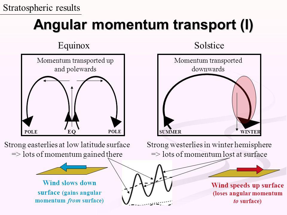 Angular momentum transport (I)