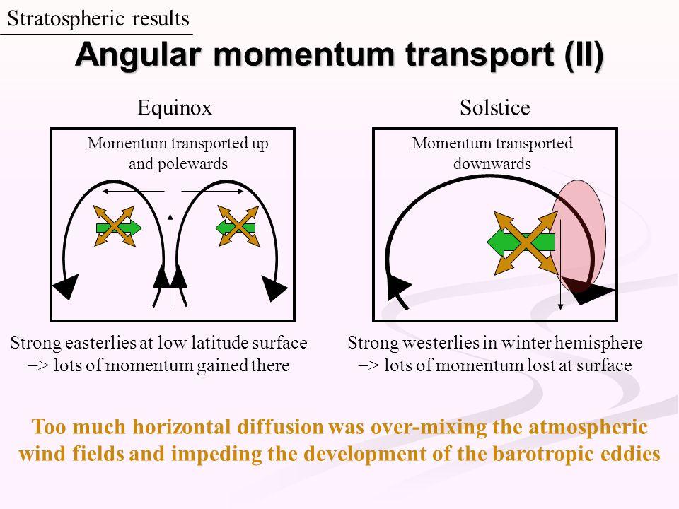 Angular momentum transport (II)