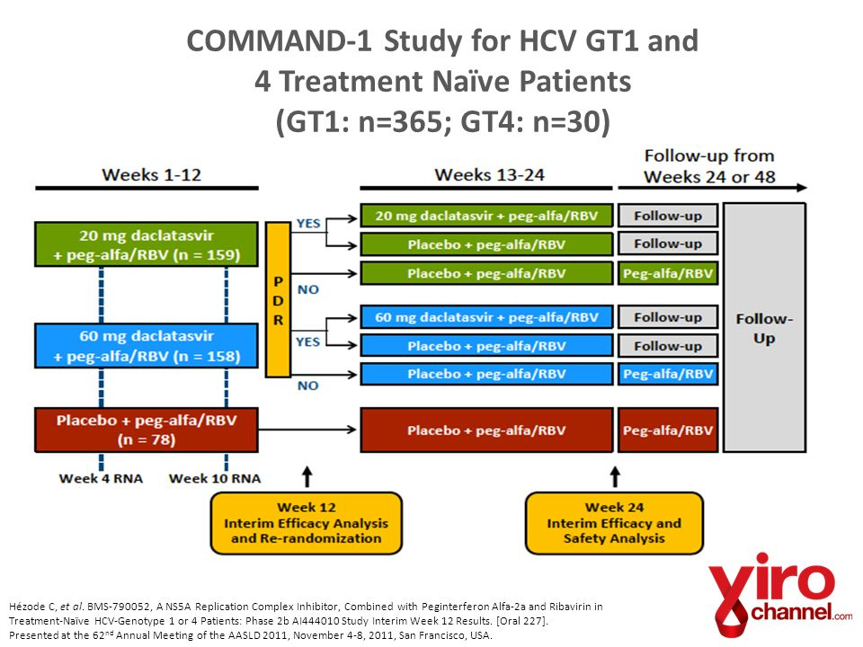 COMMAND-1 Study for HCV GT1 and 4 Treatment Naïve Patients (GT1: n=365; GT4: n=30)