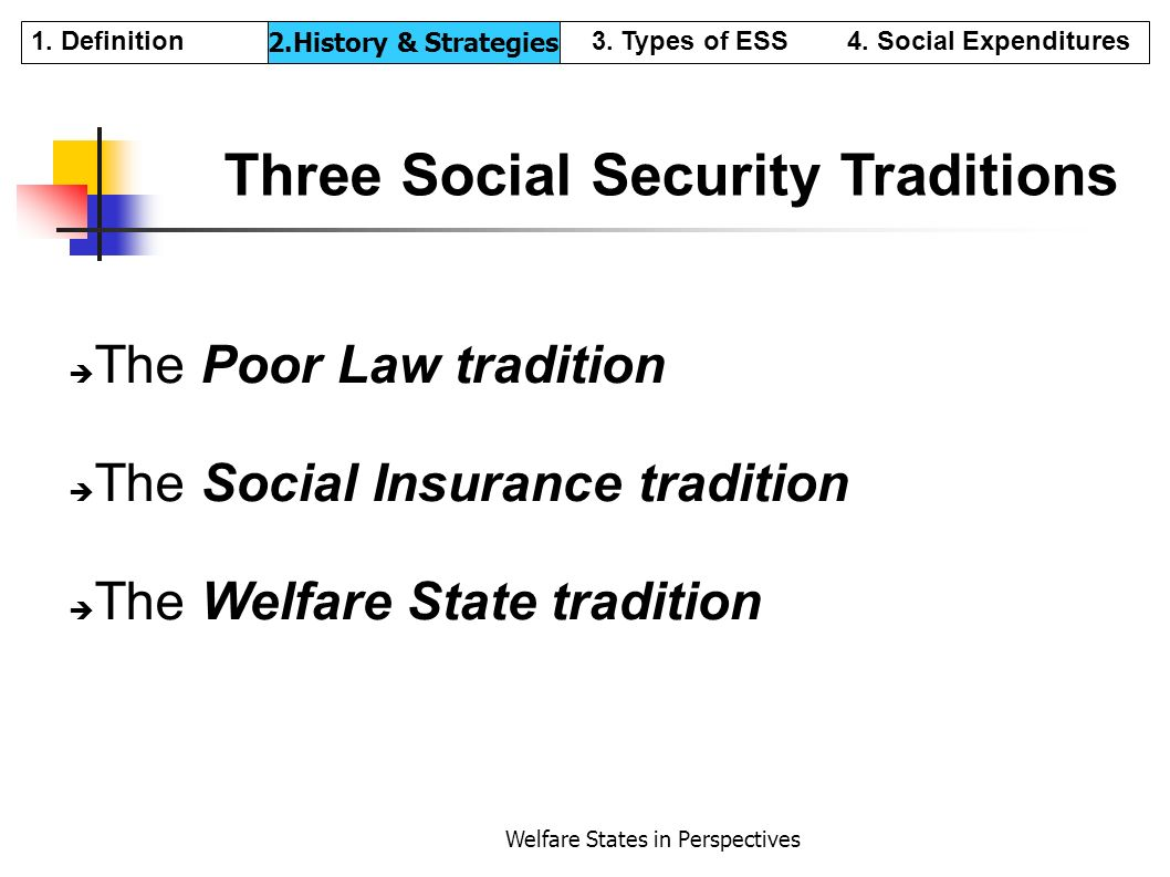 Welfare States in Perspectives