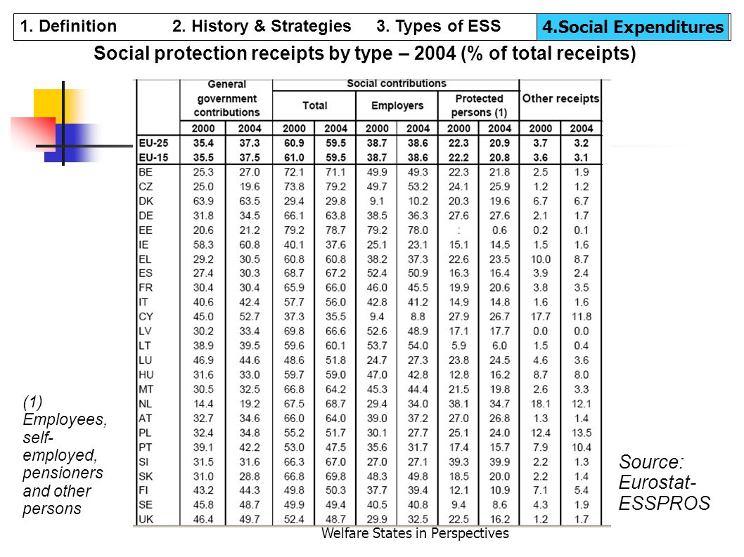 Social protection receipts by type – 2004 (% of total receipts)‏