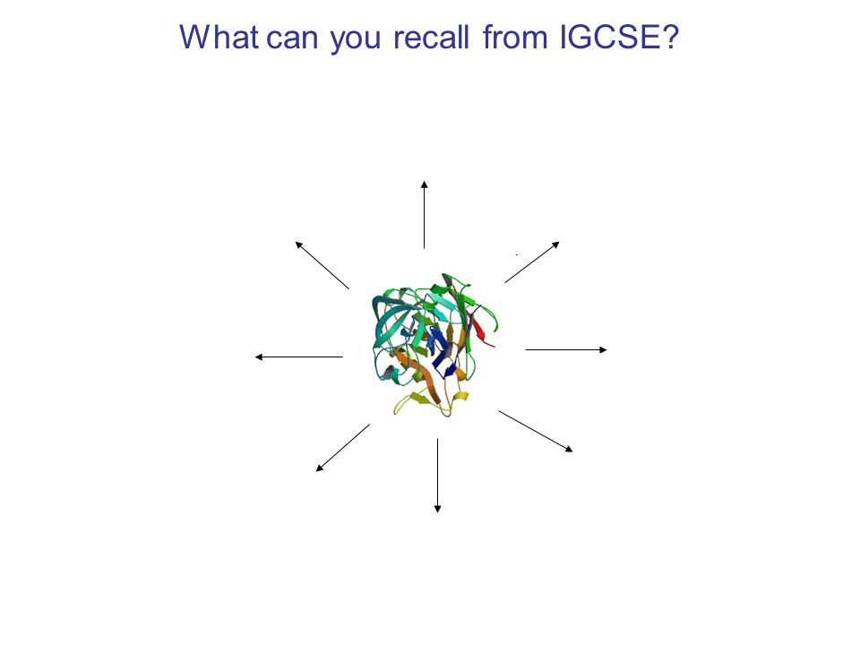What can you recall from IGCSE
