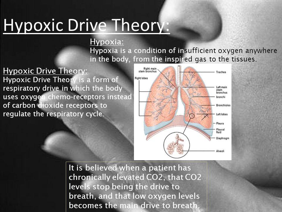 Hypoxic Drive Theory: Hypoxia: Hypoxic Drive Theory: