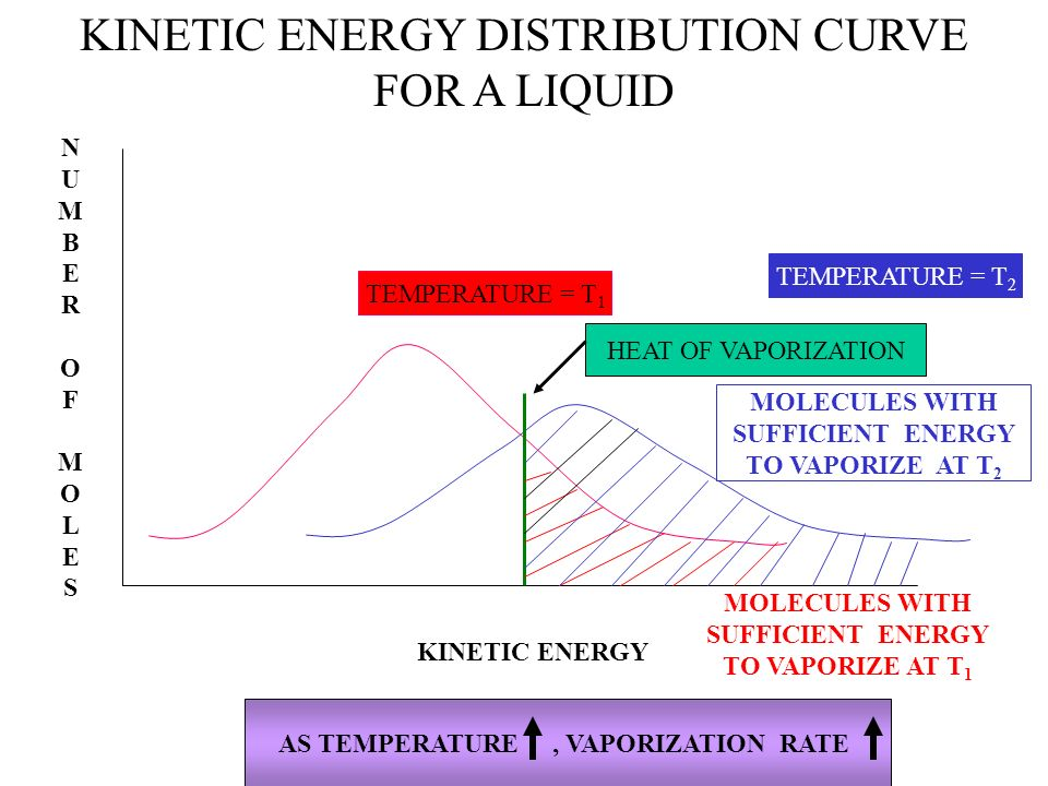 KINETIC ENERGY DISTRIBUTION CURVE FOR A LIQUID