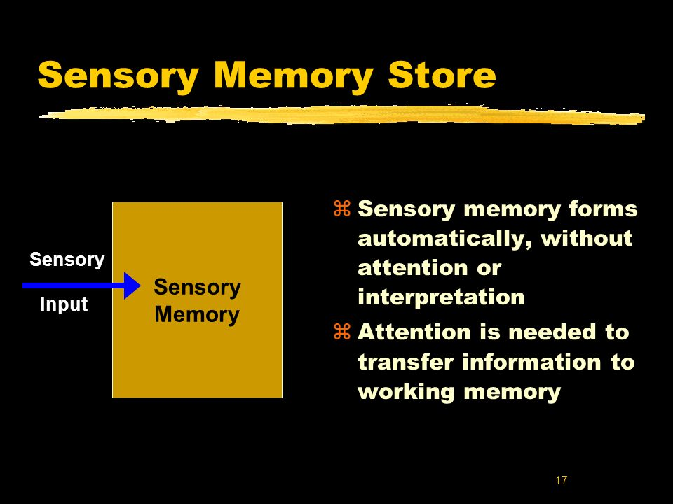 Sensory Memory Store Sensory memory forms automatically, without attention or interpretation.