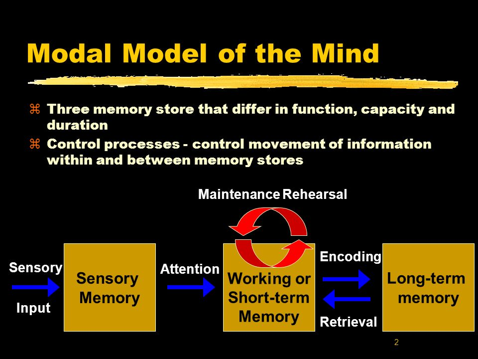 Modal Model of the Mind Long-term memory Working or Short-term Memory