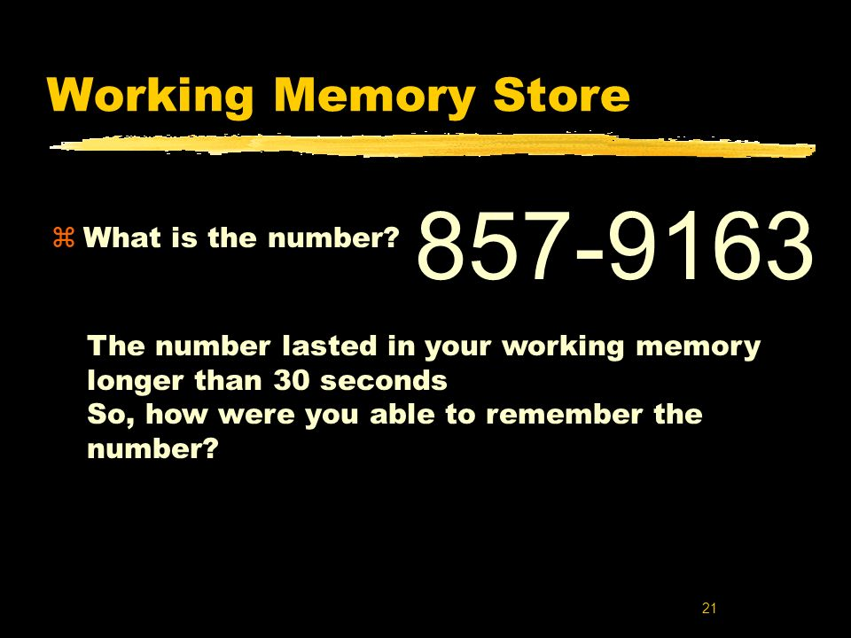857-9163 Working Memory Store What is the number