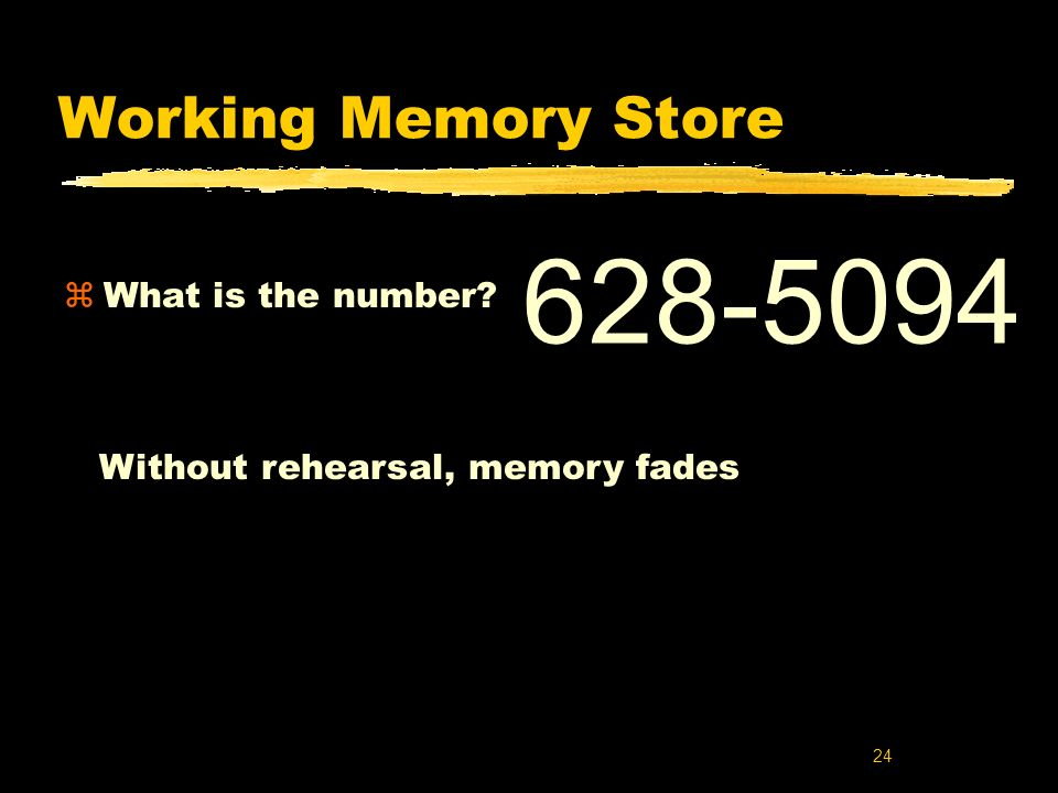 628-5094 Working Memory Store What is the number