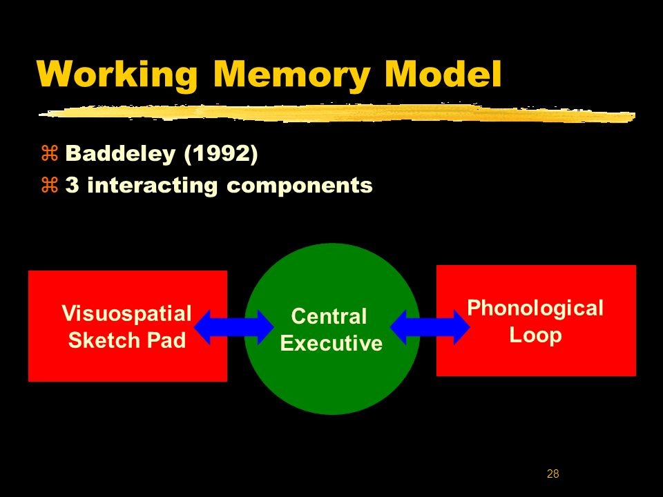 Working Memory Model Baddeley (1992) 3 interacting components Central