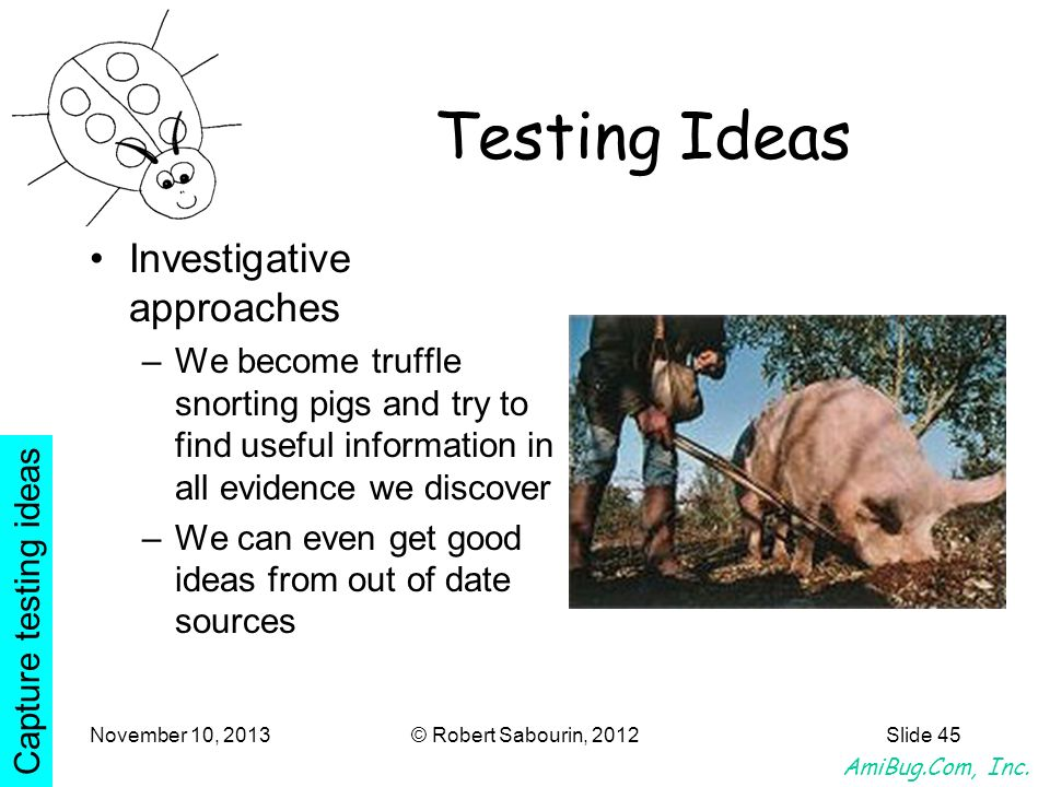 Testing Ideas Investigative approaches
