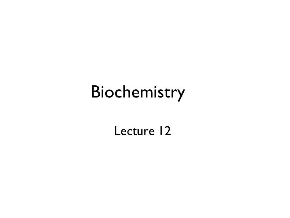Biochemistry Lecture 12