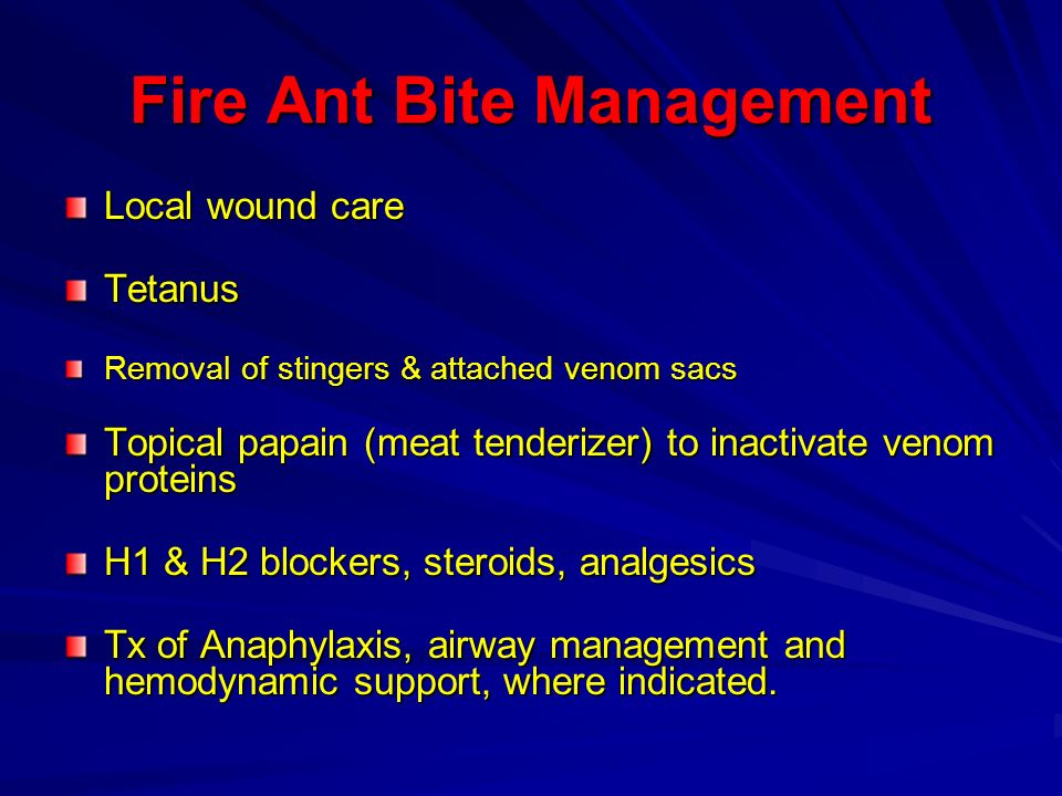 Fire Ant Bite Management