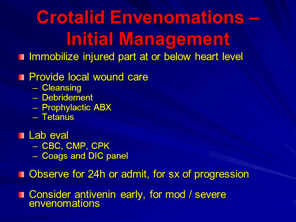 Crotalid Envenomations – Initial Management