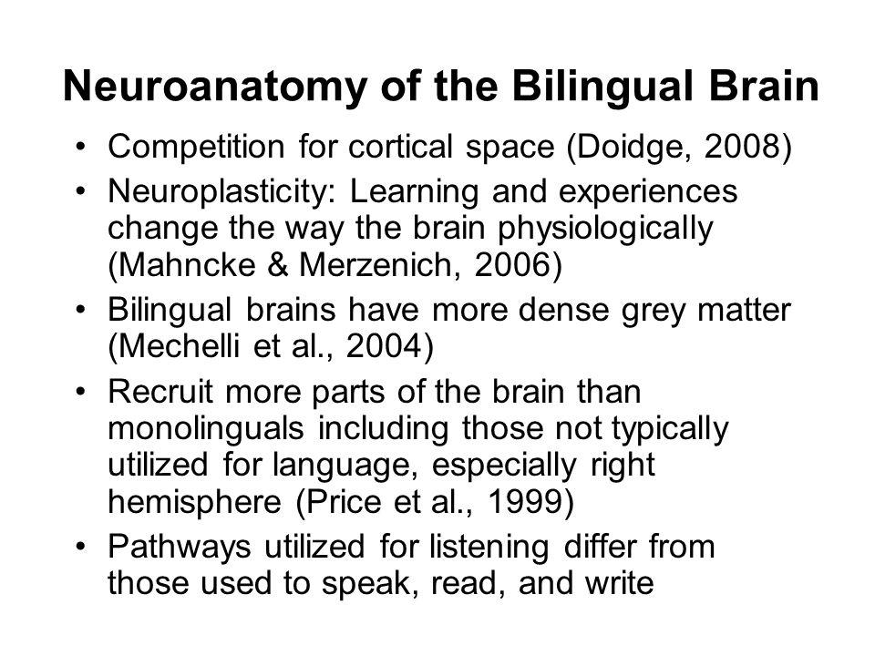 Neuroanatomy of the Bilingual Brain