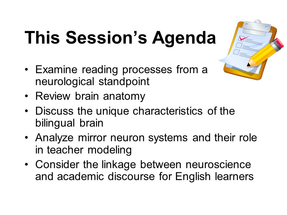 This Session's AgendaExamine reading processes from a neurological standpoint. Review brain anatomy.