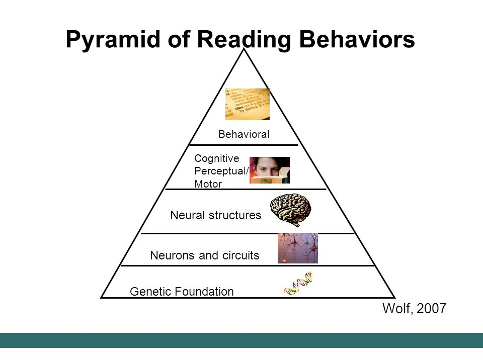 Pyramid of Reading Behaviors