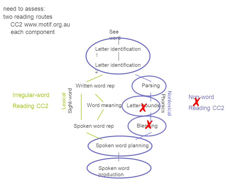✗ ✗ ✗ need to assess: two reading routes CC2 www.motif.org.au