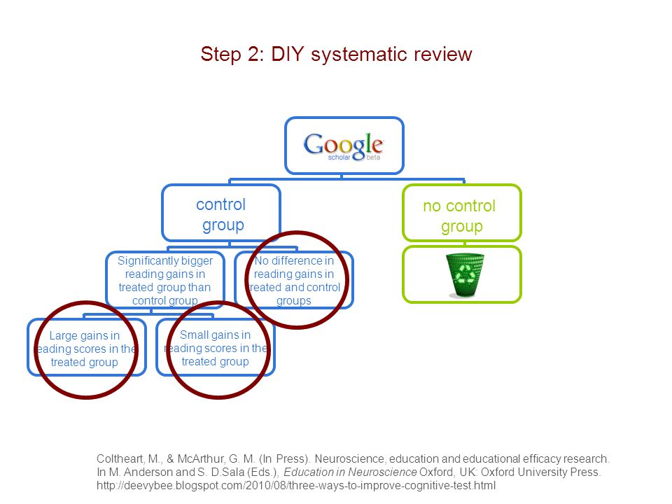 Step 2: DIY systematic review