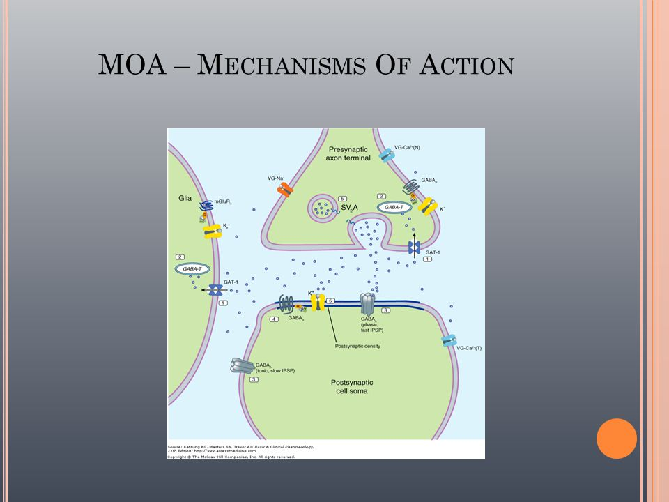 MOA – Mechanisms Of Action