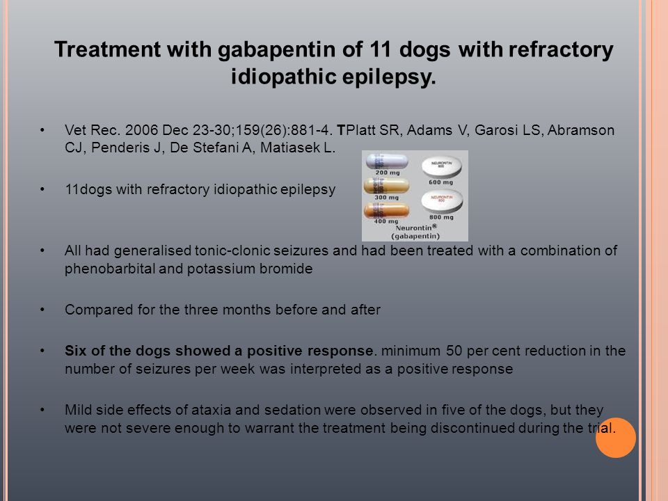 Treatment with gabapentin of 11 dogs with refractory idiopathic epilepsy.