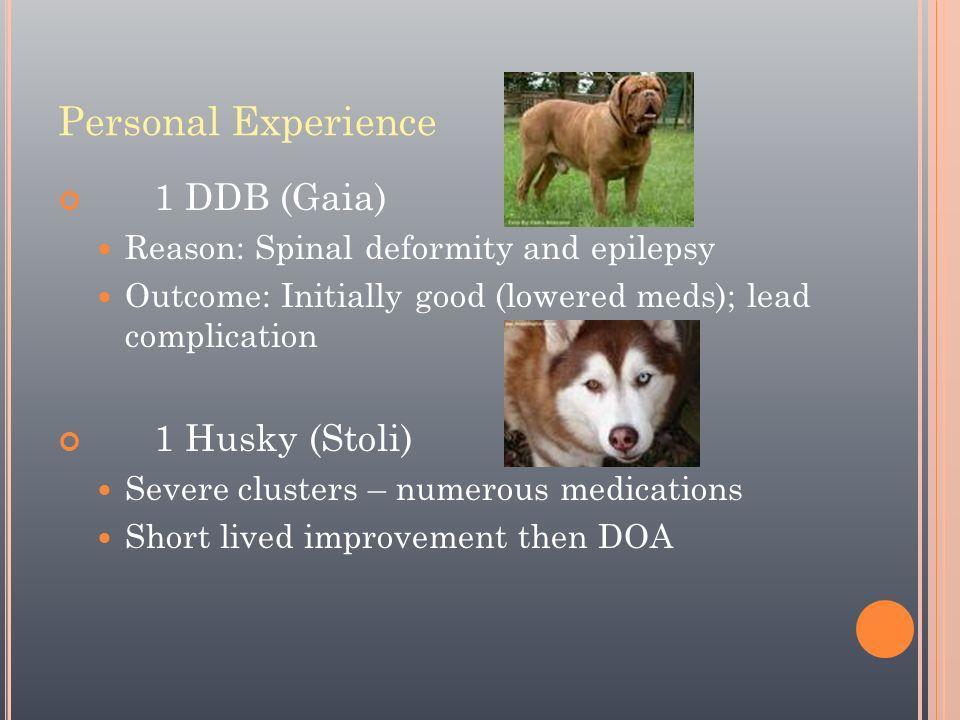 Personal Experience 1 DDB (Gaia) 1 Husky (Stoli)