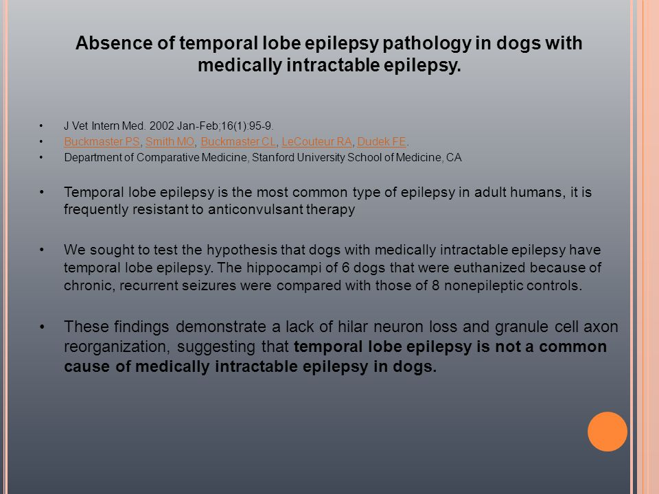 Absence of temporal lobe epilepsy pathology in dogs with medically intractable epilepsy.