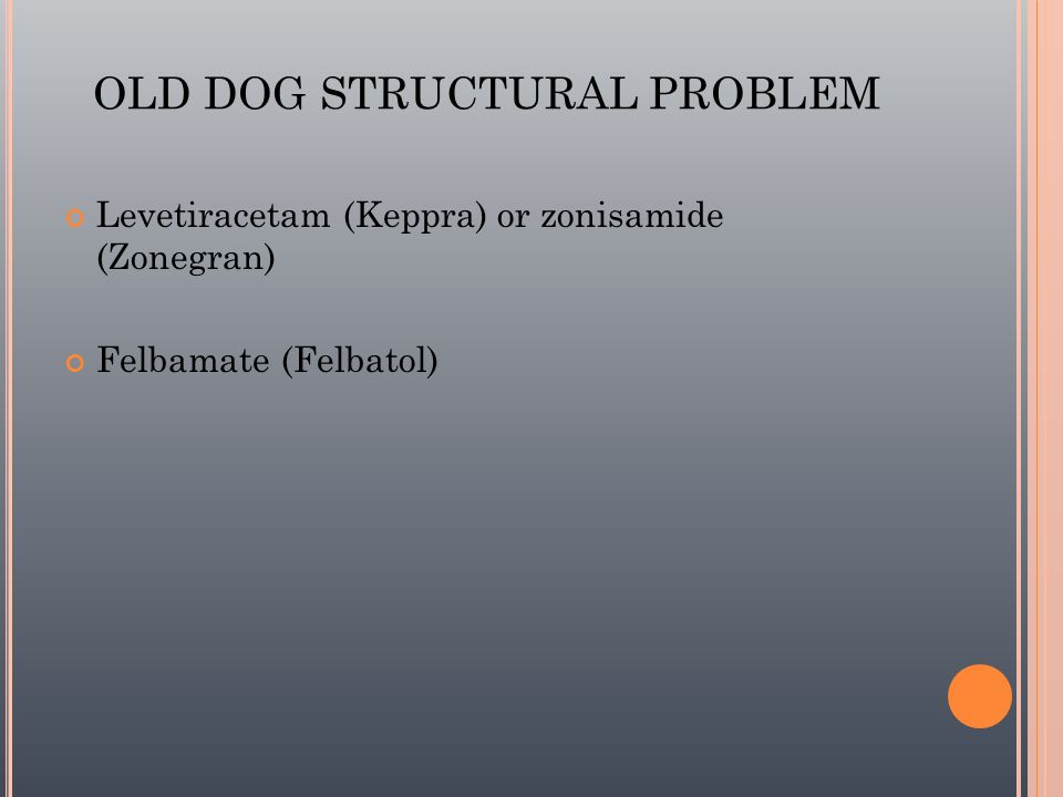 OLD DOG STRUCTURAL PROBLEM