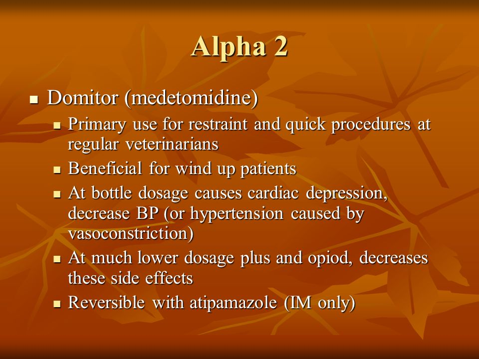 Alpha 2 Domitor (medetomidine)