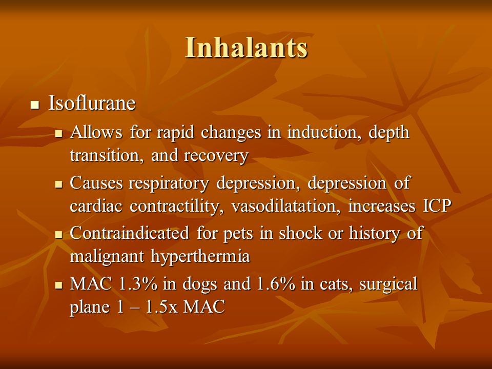 Inhalants Isoflurane. Allows for rapid changes in induction, depth transition, and recovery.