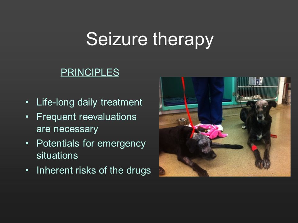 Seizure therapy PRINCIPLES Life-long daily treatment