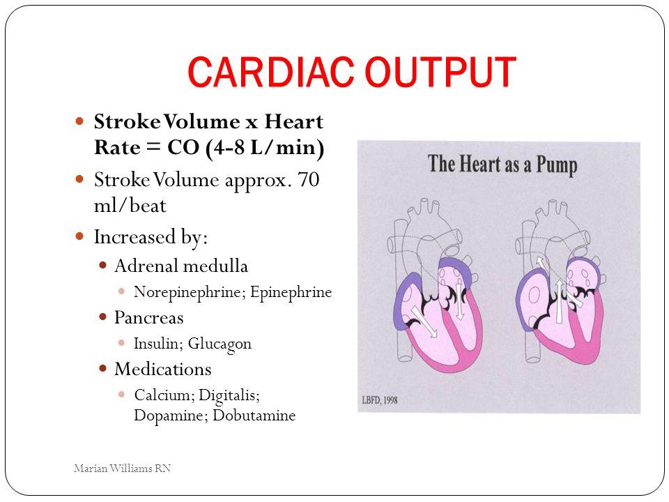 CARDIAC OUTPUT Stroke Volume x Heart Rate = CO (4-8 L/min)