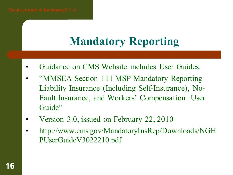 Mandatory Reporting Guidance on CMS Website includes User Guides.