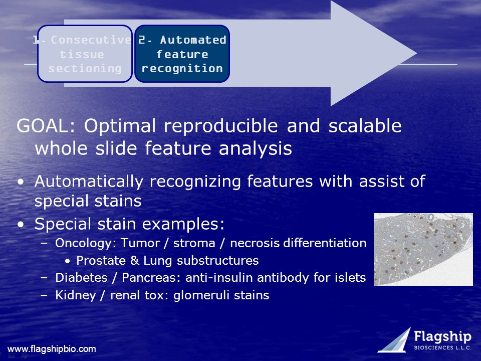 GOAL: Optimal reproducible and scalable whole slide feature analysis