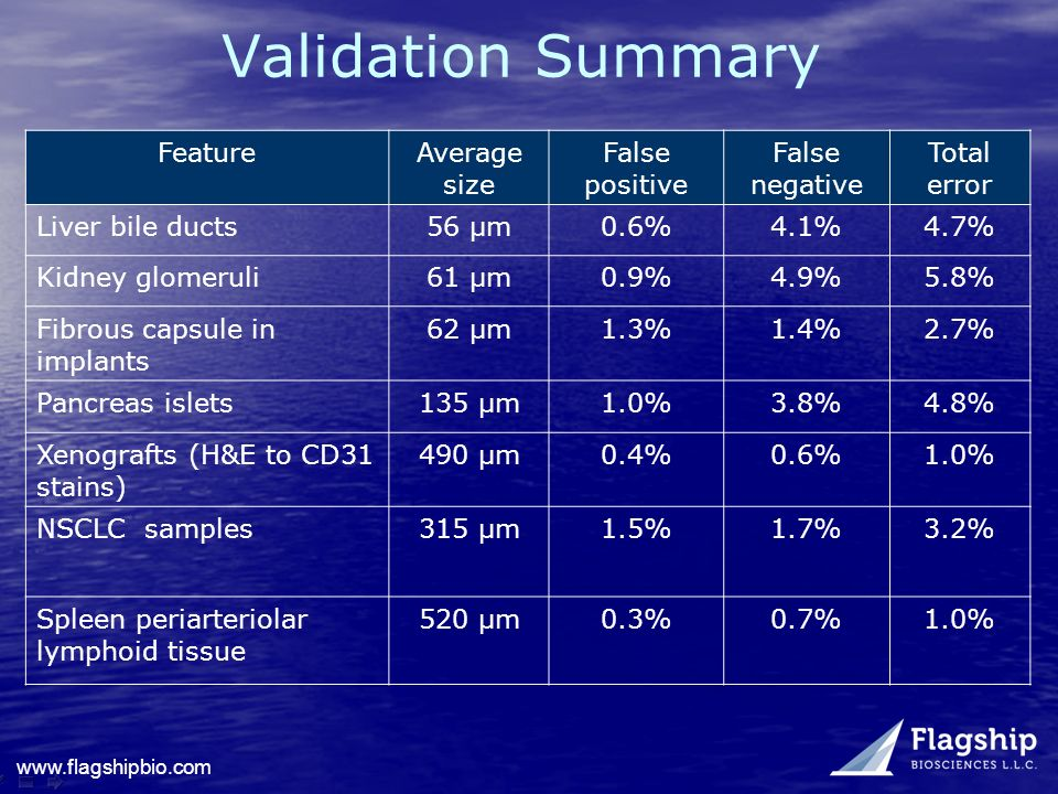Validation Summary Feature Average size False positive False negative