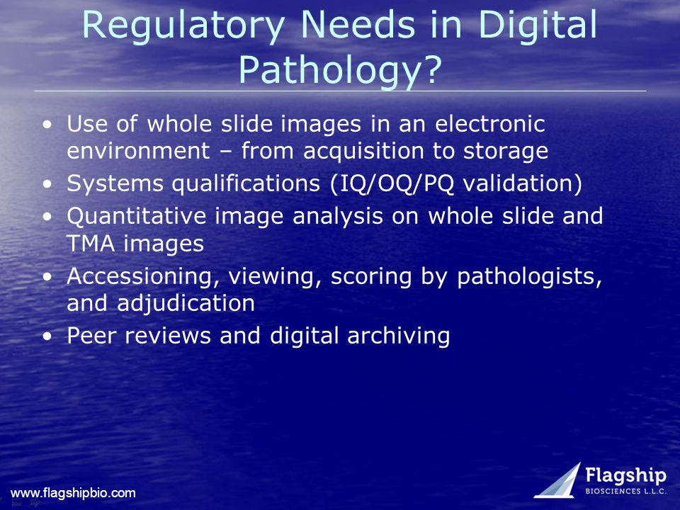 Regulatory Needs in Digital Pathology